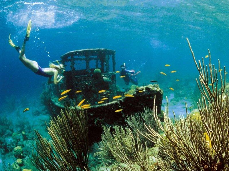 Curacao_Dive-sukellus_800x600