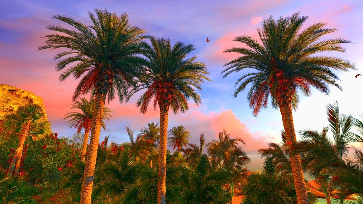 USA Havaiji kaukomatka Kymenmatkat