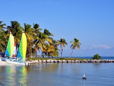 Usa_Florida_Smathers Beach On The Atlantic Ocean in Key West, Florida, With Palm Trees, Catamaran Sailboats And A Pelican_800x600