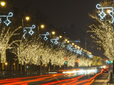 Budapest_Christmas lights on a row of trees, Budapest, Hungary400x300