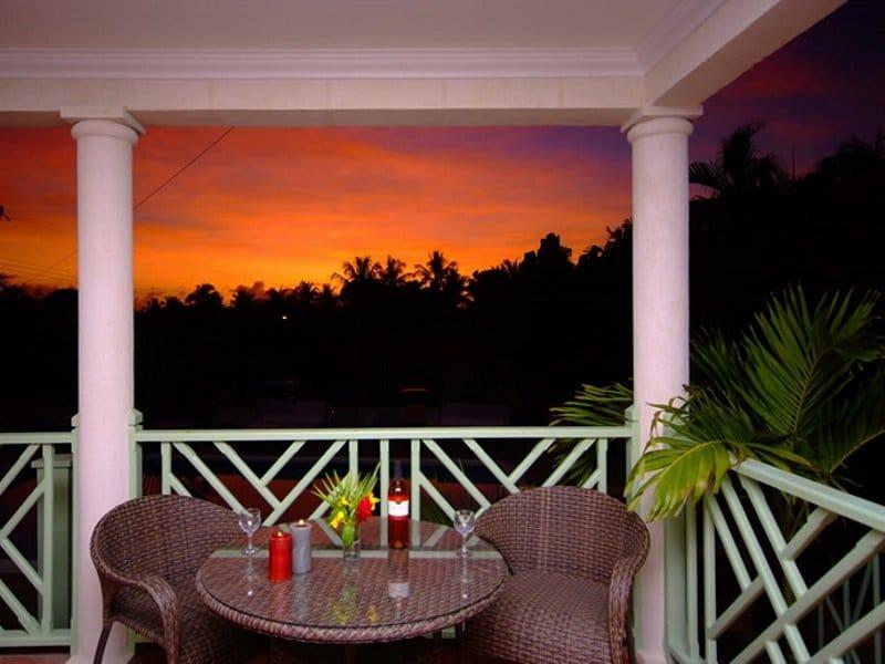 Barbados_Butterfly_EM_palmsrestaurant_800x600