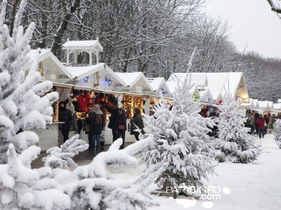 Pariisi_Christmas_snow_800x600