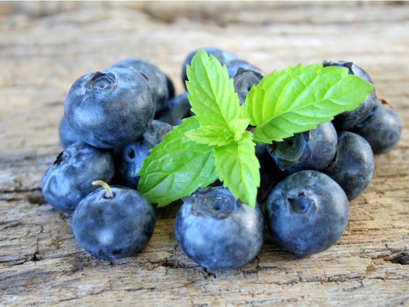 Blueberries with mint leaves_800x600