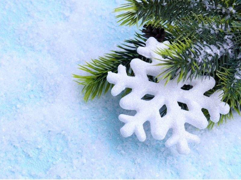 Christmas Decorative snowflake and fir tree on light background_800x600