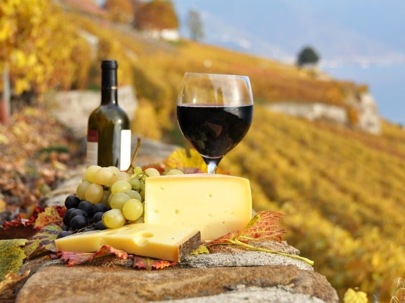 Drink_Wine and cheese_800x600
