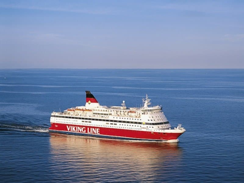 Viking laiva_800x600