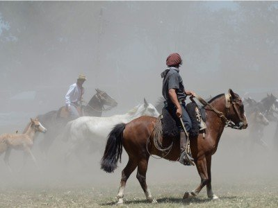 Gaucho rides a horse in Buenos Aires, Argentina_800x600