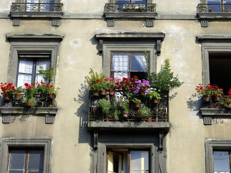 Sveitsi_Denova_House with flower decoration in the old town_800X600