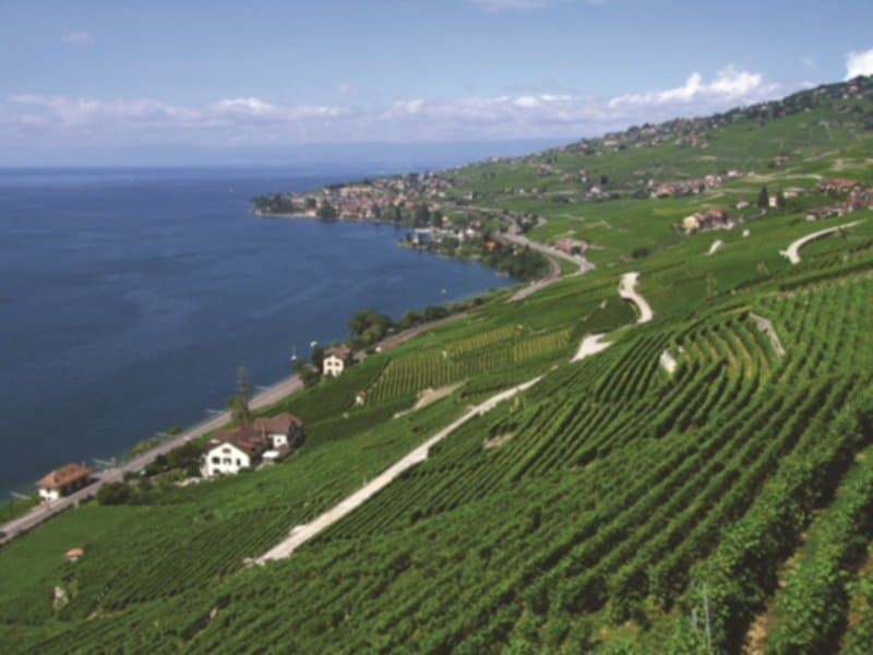 Sveitsi_Fins_Lavaux-epesses_800X600