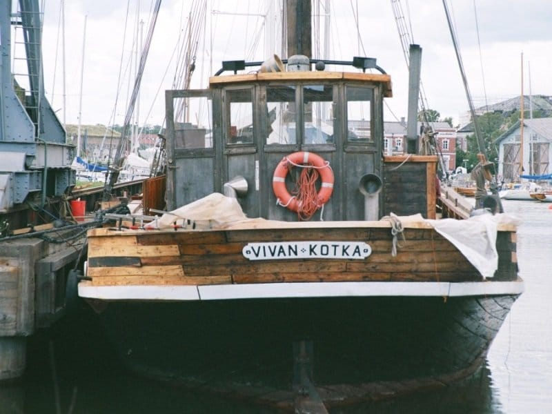 Kotka Vivan