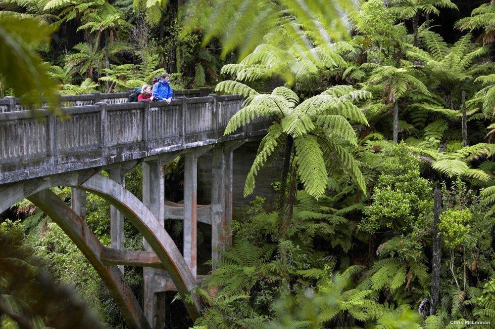 The Bridge to Nowhere, Whanganui River, Ruapehu District. New Zealand. model release # 430 & 431