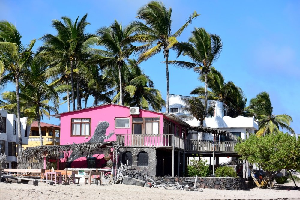 galapagos isabela island casa rosada 1000