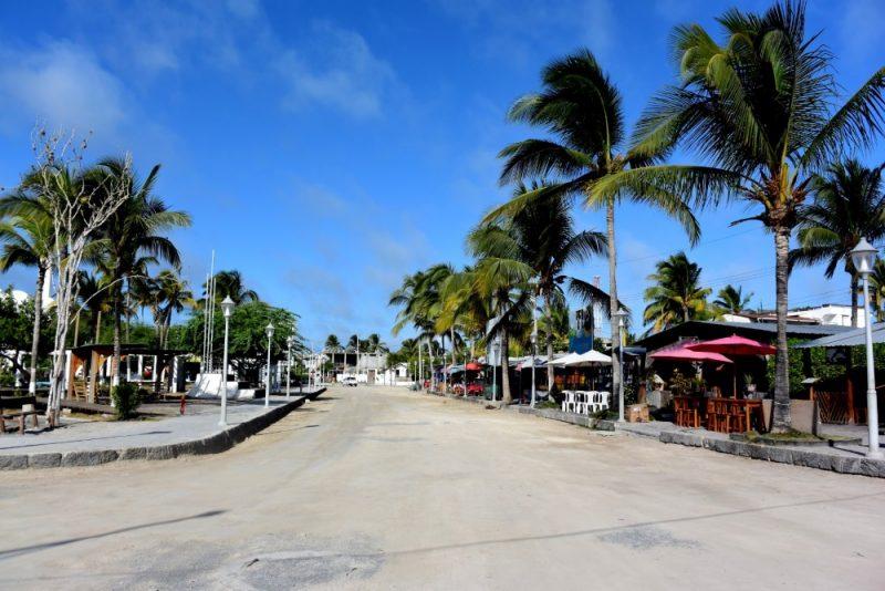 galapagos isabela island puerto villamil 1000
