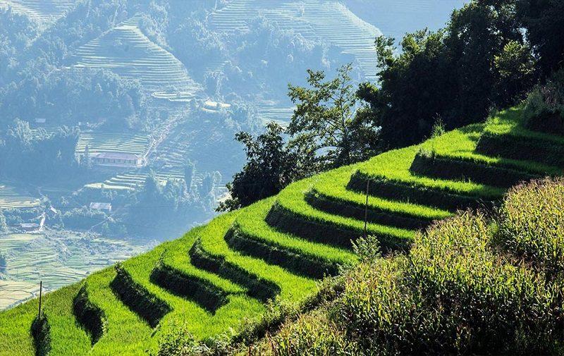 Vietnam riisiterassit