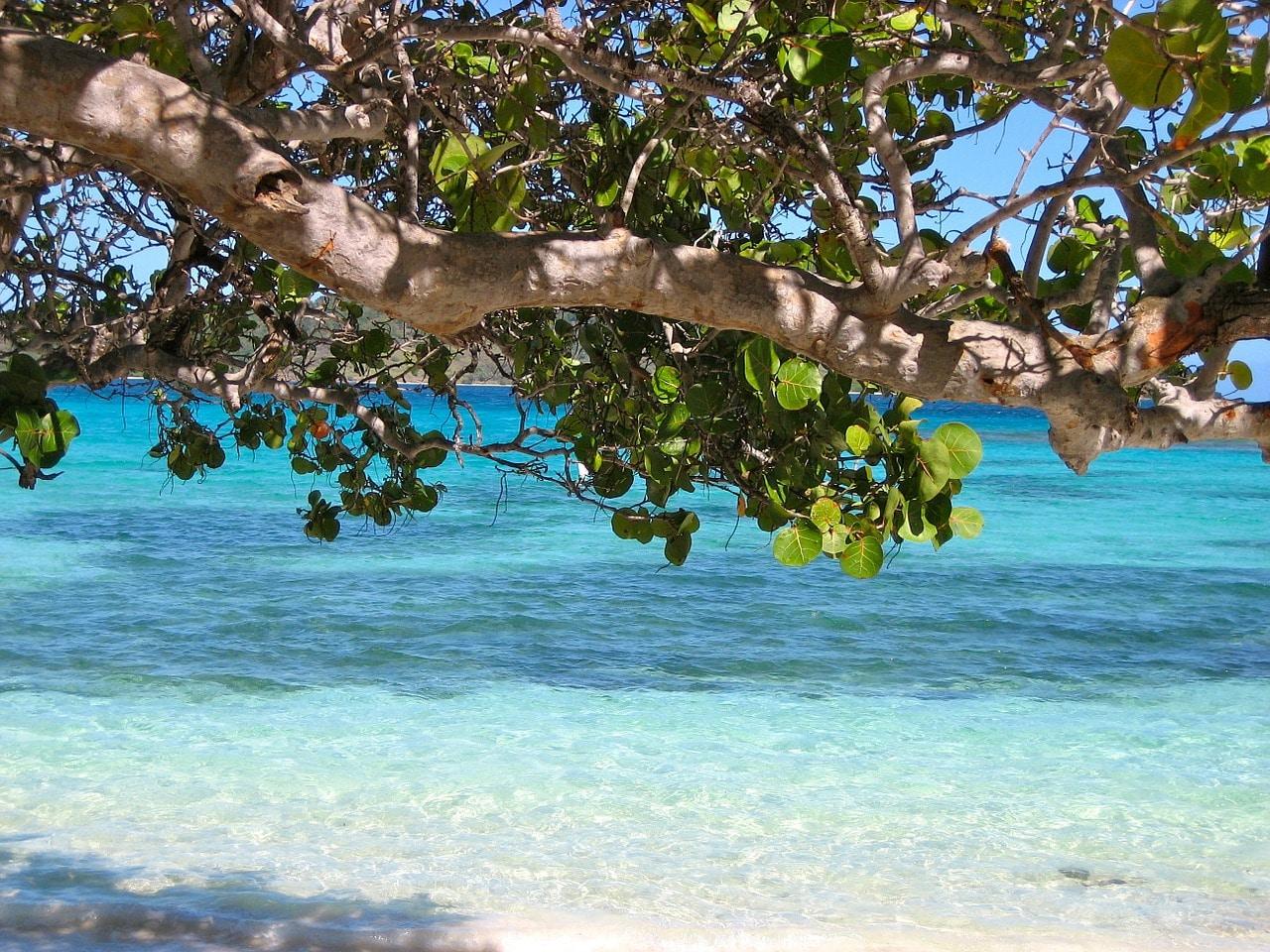 Barbados kaukomatka