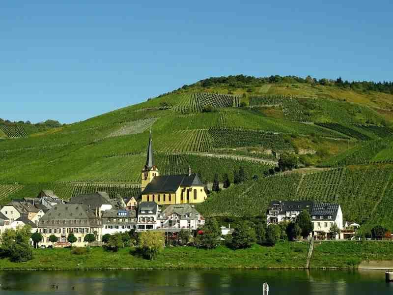 Saksa Mosel viinitarha